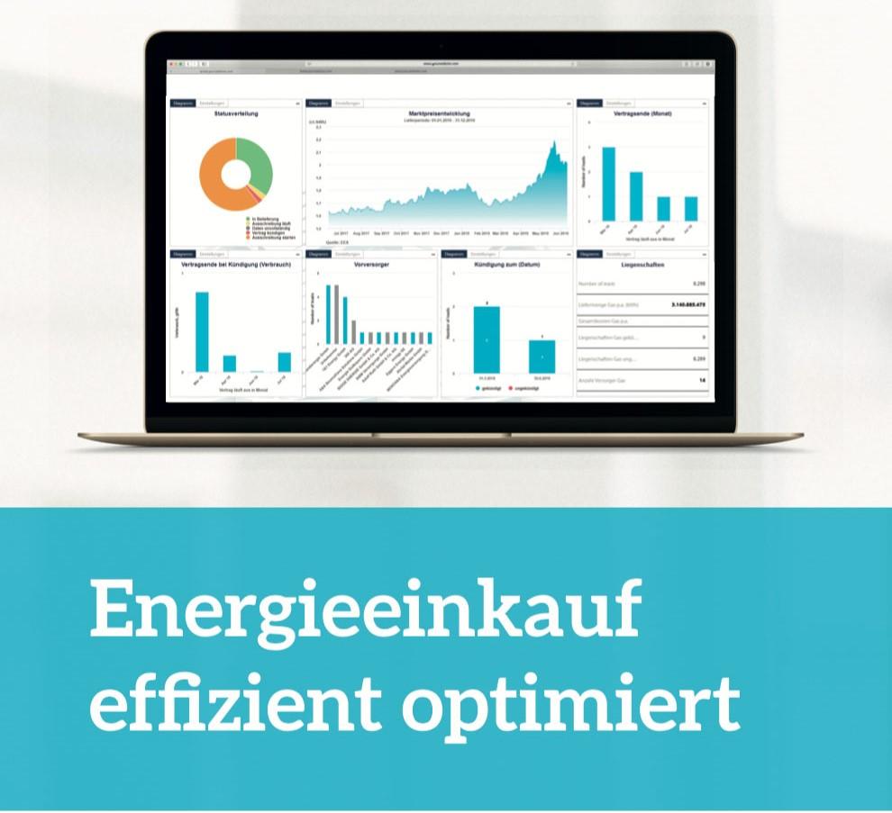 EFI NET Energieeinkauf effizient optimiert